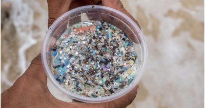 microplastics-dish