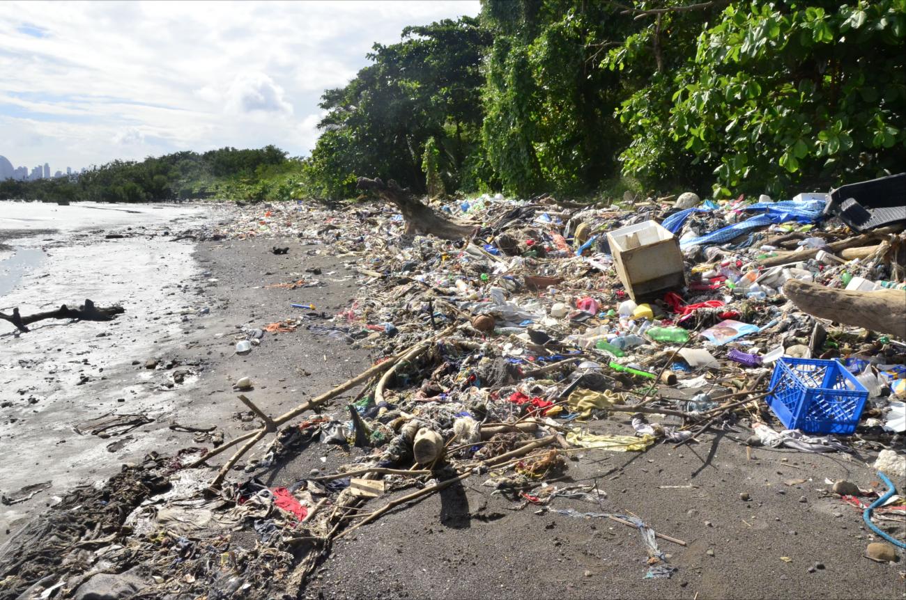 plastic problem beach